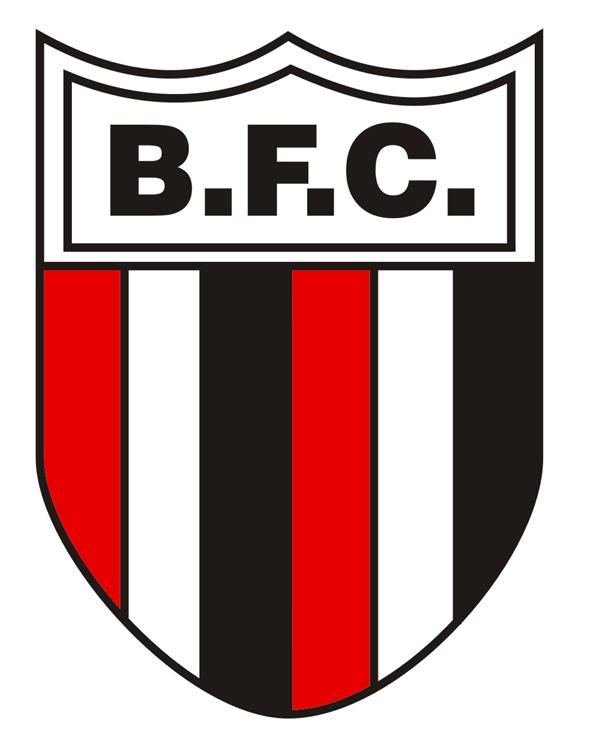 85b4bcf53d Bandeiras Botafoguenses  Botafogo pelo mundo - Botafogo de Ribeirão ...